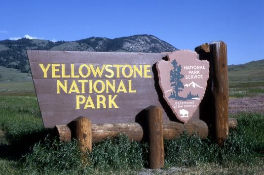 yellowstone skilt