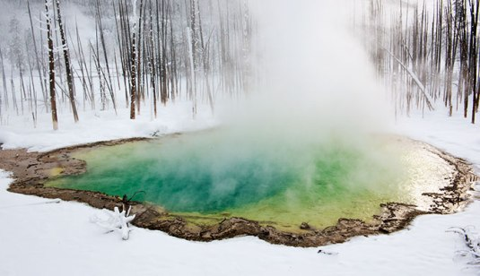 Yellowstone vinter