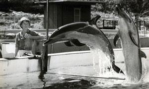 karen-with-dolphins-300x179